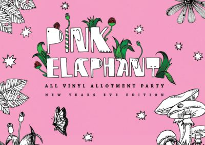 pink-elaphant-nye